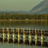 lagoon44